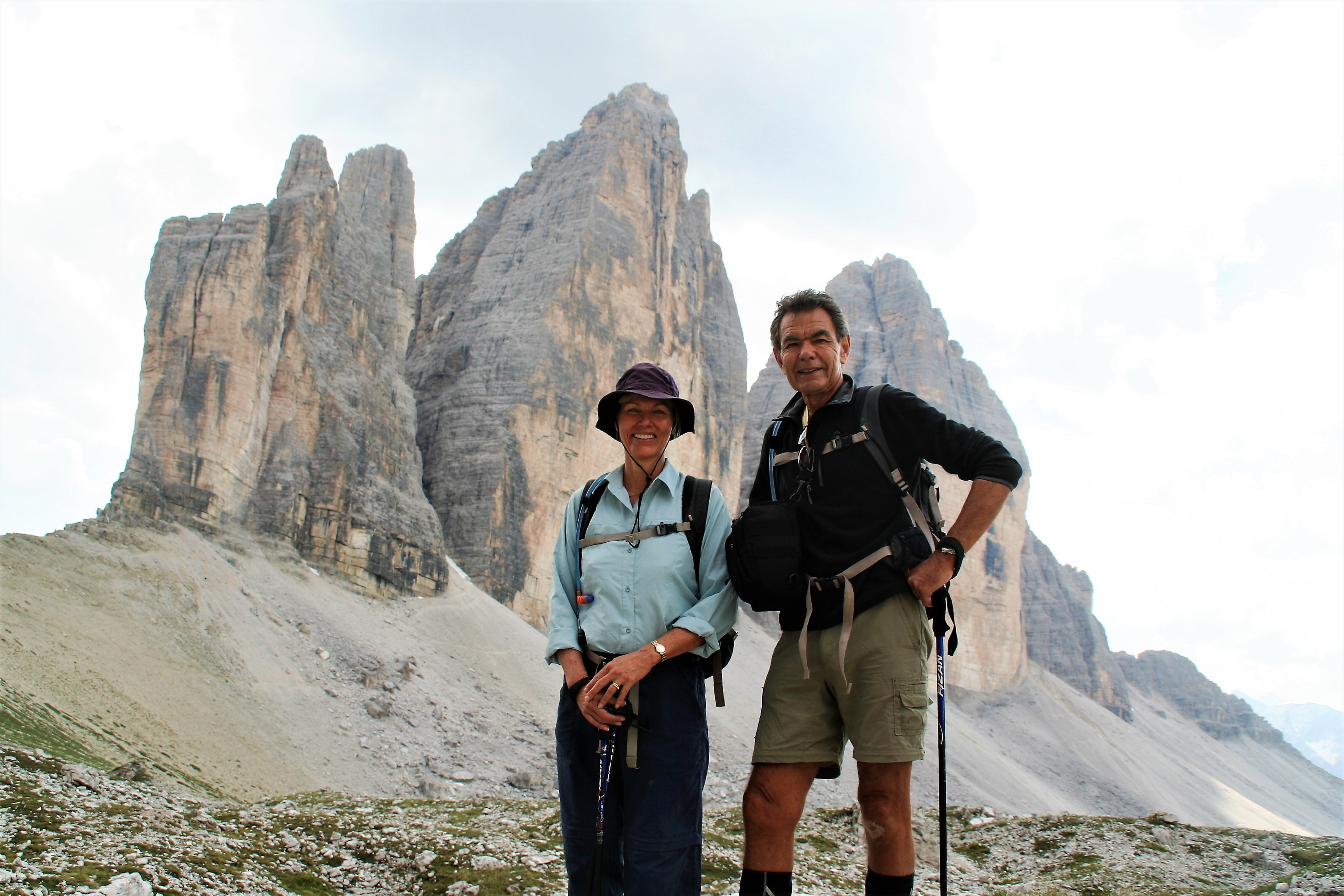 Alpine rose in Tre Cime di Lavaredo